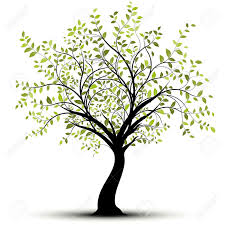 green tree white background royalty free cliparts vectors