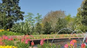 Botanical Gardens South Carolina The Best Botanical Gardens On The Coast Coastal Living