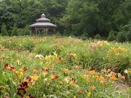 Springfield Botanical Garden Here Are The 11 Most Beautiful Gardens You Will See In Missouri