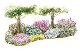 Shade Garden Ideas Shade Garden Plans