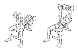 Chest Flat Bench Press Top 8 Dumbbell Exercises For Chest Howtoxp Com