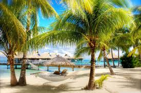 online get cheap tropical posters and prints aliexpress com