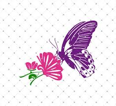 svg cut files for cricut and silhouette butterfly with flower