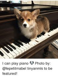 Piano Memes - 25 best memes about piano photos piano photos memes