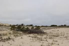 sand dune trail massachusetts maps u0026 photos for hiking biking