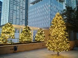 Barcana Christmas Trees by Higher Ground Lawn Care U0026 Lighting Holiday Lighting U0026 Decor