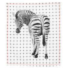 zebra print desk accessories evermade zoo portrait framed print zebra quirky animal art