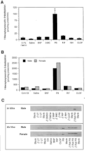 in vivo and in vitro induction of cytochrome p450 enzymes in