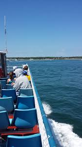 ferry rides sun poisoning beaches and more narragansett in