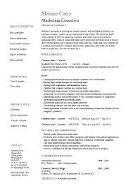 Executive Resume Template by Sales Director Resume Sales Account Manager Resume Sle