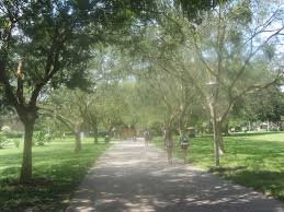 Ucf Campus Map Orlando Pictures Thread Edgewater Celebration Baldwin Storage