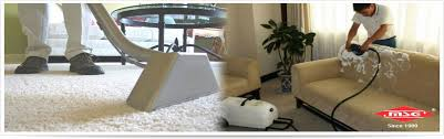 Dry Cleaning Sofa Msg Carpet Sofa Shampoo Services In Ncr Delhi Gurugram