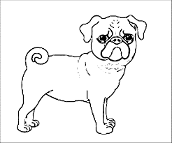 pug puppy coloring pages within page snapsite me