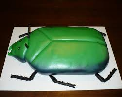 bug cakes sugar lump cakes birtday cakes cont