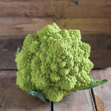 romanesco cauliflower seeds johnny s selected seeds