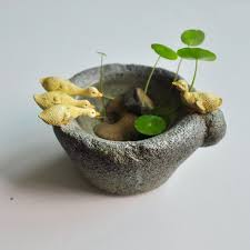 Decorative Indoor Planters Accessories Collar Picture More Detailed Picture About Creative