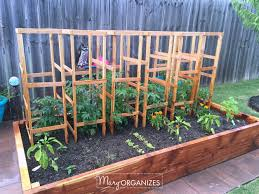 garden cage fruit and vegetable cage chicken wire garden cage