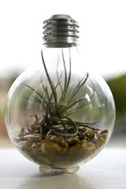 what to do with old light bulbs what to do with old light bulbs for 5 creative uses for old glass 15