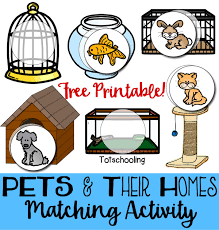 pets u0026 their homes matching activity totschooling toddler