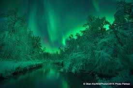 northern lights coupon book after the northern lights photo tour departs reine we will take