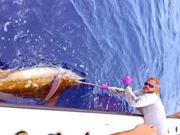 hunting guides in louisiana get to know voodoo fishing charters very experienced inshore