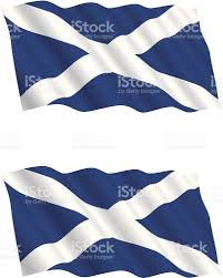 scottish flag flying in the wind stock vector art 118214089 istock