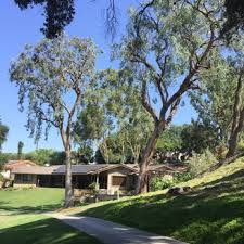 quality tree service tree services 2279 n euclid ave upland