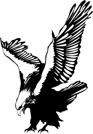 eagle clipart air animal pencil and in color eagle clipart air