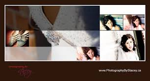 professional wedding albums contemporary gradient way cool wedding album