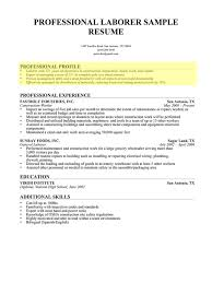 example profile for resume the perspective of the resume personal