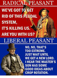 Good Ideas For Memes - radical peasant we ve got to get rid of this feudal a system it s