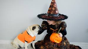 Halloween Costume Ideas For Pets 10 Halloween Costume Ideas For Kids U0026 Their Pets That You U0027ll Be