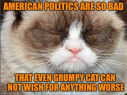 No Grumpy Cat Meme - grumpy cat can bear no more imgflip