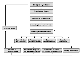 statistical analysis of dna microarray data in cancer research