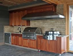 building kitchen cabinets cheap astonishing brockhurststud com