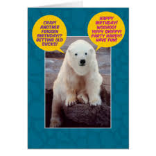 polar bears greeting cards zazzle