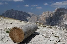 free photo dolomite log landscape wood free image on pixabay