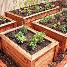 Best Raised Garden - catchy setting up raised garden beds and 61 best raised bed