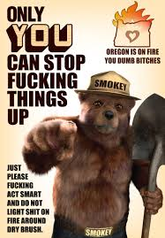 Smokey The Bear Meme - pro tip it s all dry right now album on imgur