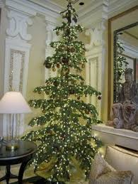 here is my the silvertip tree seaglasssundays a