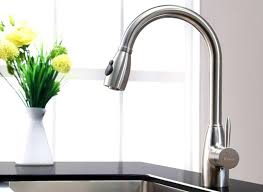 Kitchen Pro Style Kitchen Faucet by Kitchen Pro Style Kitchen Faucet Best Kitchen Faucets Consumer