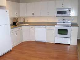 Basement Kitchens Ideas Luxury Basement Kitchen Ideas U2014 Onixmedia Kitchen Design