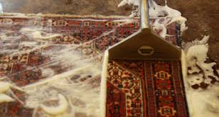 How To Wash Rugs At Home Cleaning Rugs At Home Rugs Ideas