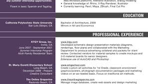Best Professional Resume Writing Services Resume Success Stories Red Letter Resumes Awesome Resume On