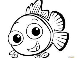 unique picture fish color 42 additional print