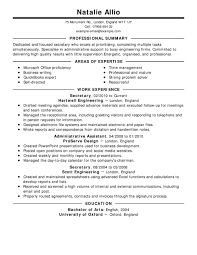 Professional Summary Resume Examples For Software Developer by Resume Software Test Engineer Skills Sample Template Resume Cv