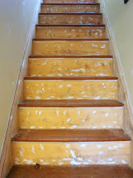 Stair Protectors by Images About Under Stair Storage On Pinterest Stairs And Pantry