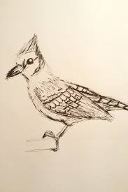 draw a bird day mechanicalpen