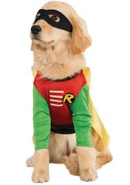 pet costumes robin pet costume pet costumes