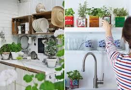 plantes cuisine décorer avec des plantes aromatiques des pots dans la cuisine un